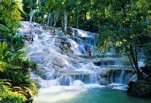 Climb up Dunn's River Falls in Jamaica