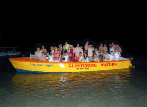 Night Boat Tours at Glistening Waters