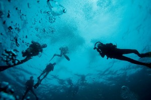 Great Specialized Scuba Diving in Ocho Rios, Jamaica